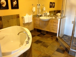 Minions, build me this bathroom!